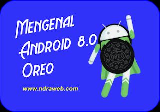 Mengenal Android 8.0 Oreo