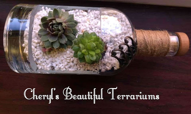 Cheryl's Beautiful Terrariums - created using beautiful recycled glass bottles, these terrariums are a true work of art.