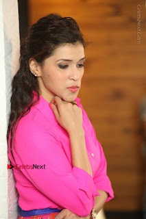 Actress Mannar Chopra in Pink Top and Blue Skirt at Rogue movie Interview  0172.JPG