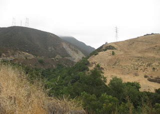Looking up at a fog-kissed pass along Highway 41, east of Morro Bay, California
