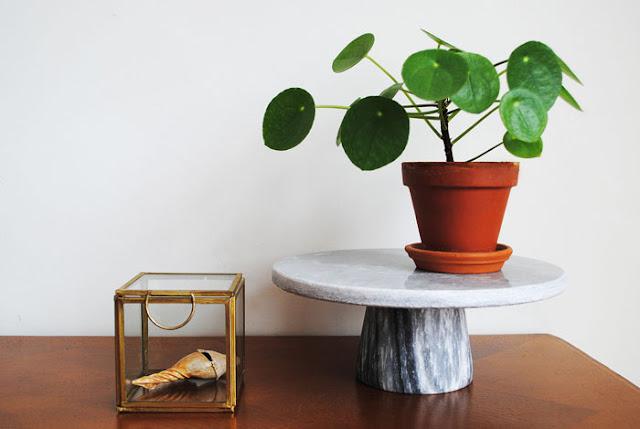 Een marmeren taartstandaard met erop een pannekoekenplantje en ernaast een glazen kistje met een schelp erin.