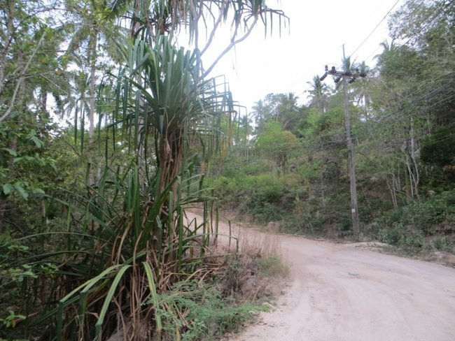 Грунтовая дорога на Тао