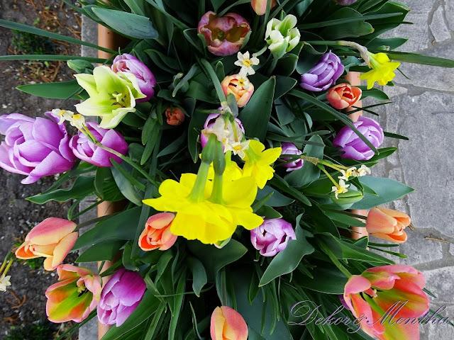 Dekor&Mentha Shop Tulipán Virághagyma Kollekciója