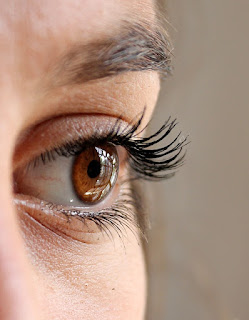 Mata, Bagian - Bagian Mata dan Fungsinya