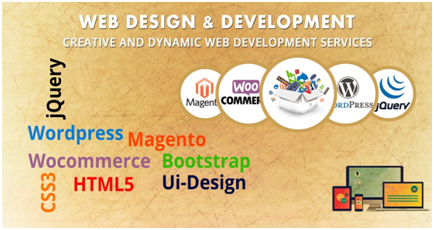 How to Select a Top Web Design Company in New Jersey (8 Questions) 14