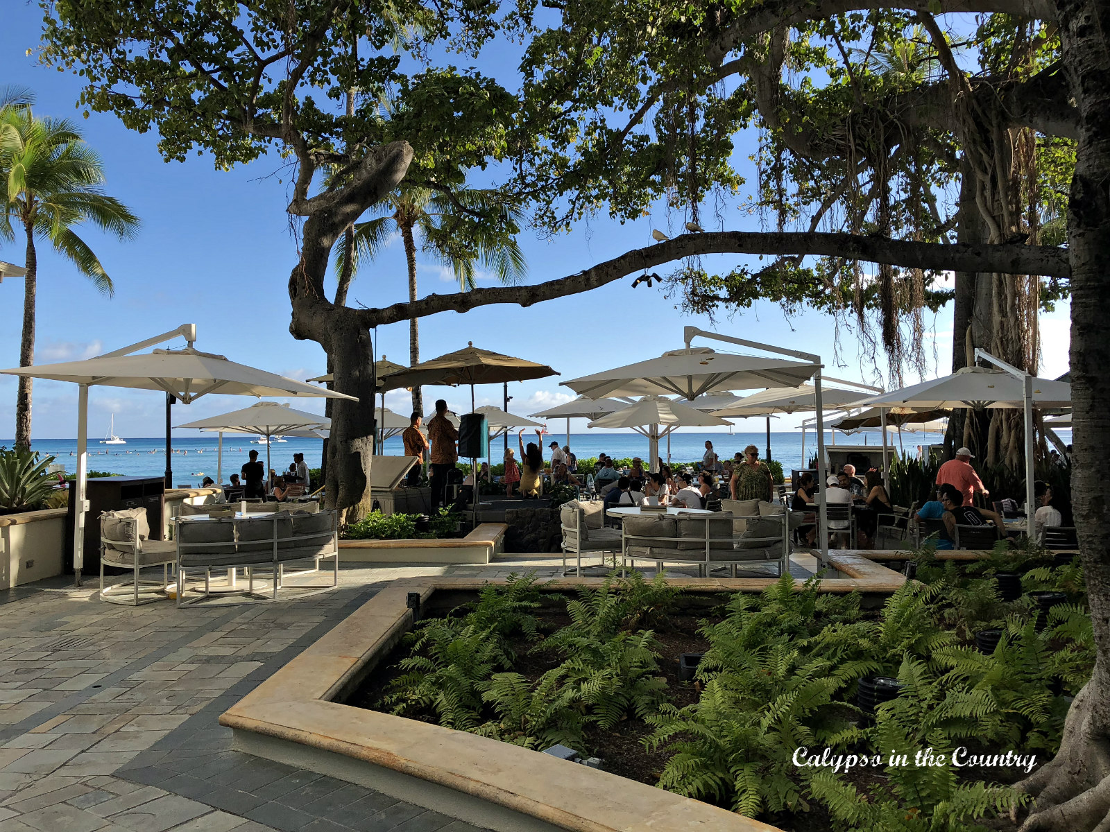 beachside dining at the Moana Surfrider Hotel