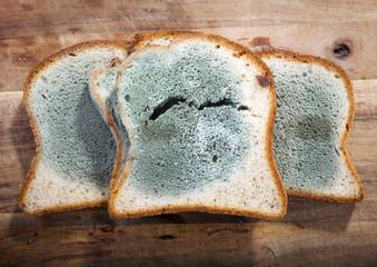 Bagaimana Proses Pembusukan pada Roti? Dawil Ulyatul Umami
