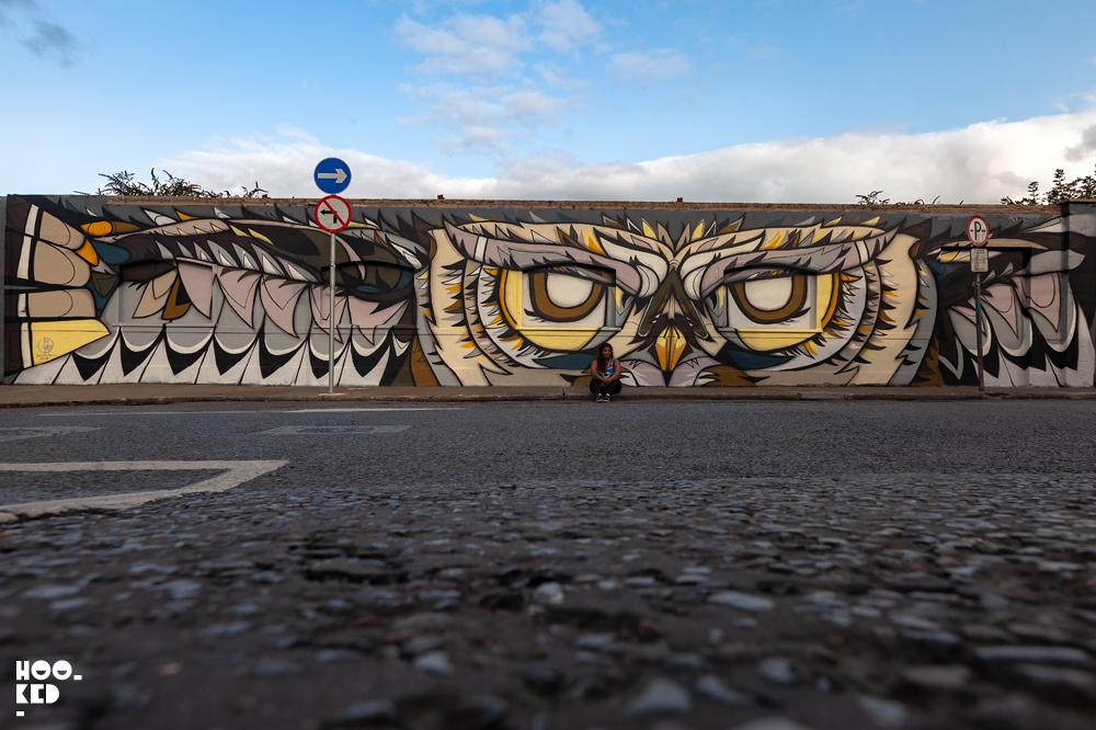 Flying owl mural by Dubai based street artist Fats Patrol for Waterford street art festival
