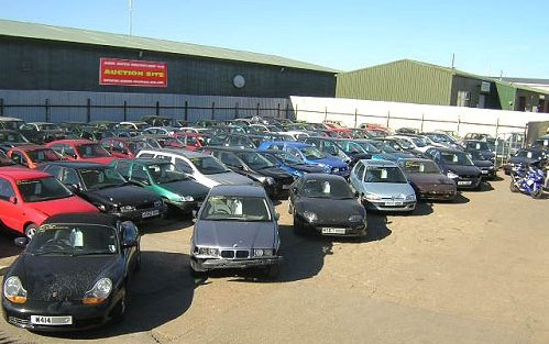 Car Auctions Rental Companies