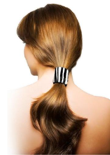 The Stylish Ponytail Hairstyles 2011 And 2012 Hairstyles For Women