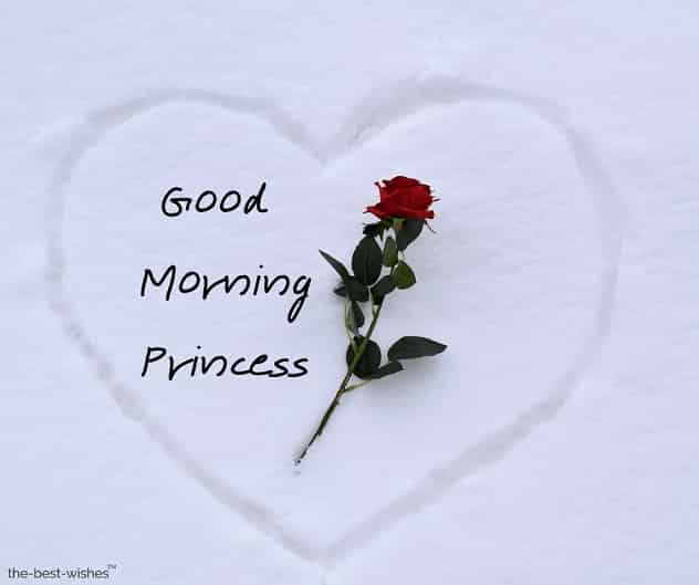 picture of good morning princess
