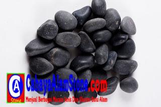 Harga Batu Koral Sikat Alor Hitam