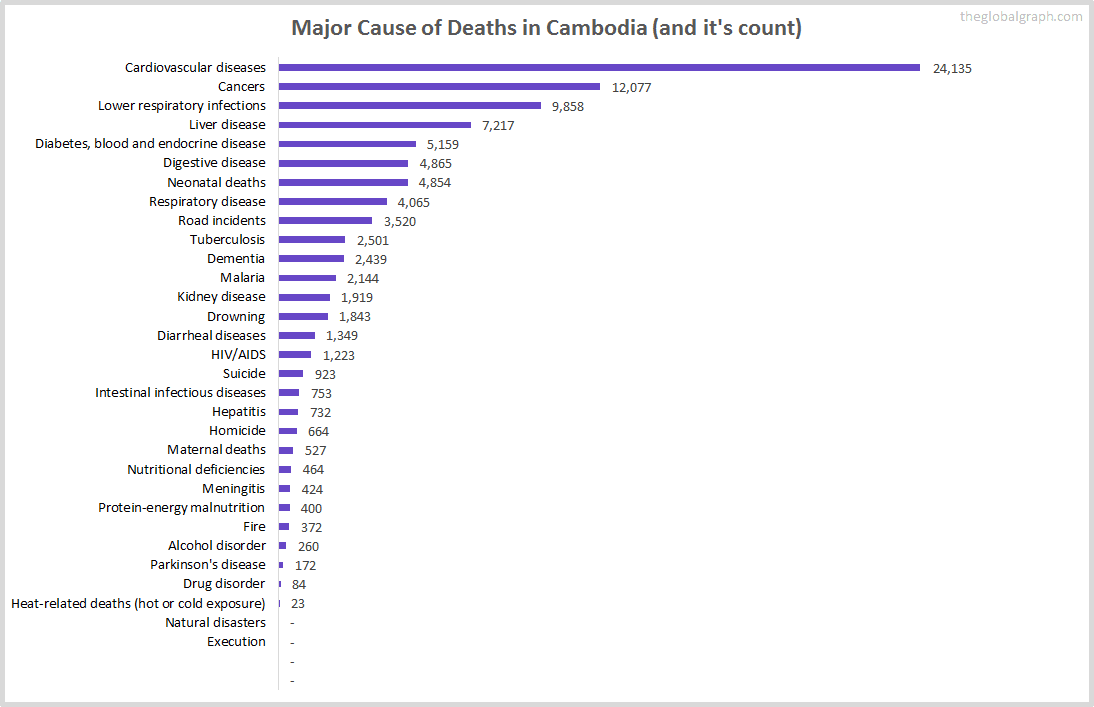 Major Cause of Deaths in Cambodia (and it's count)
