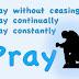 Kneel Before the King - An American In Prayer