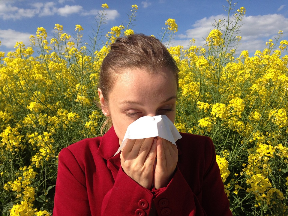 The Hygiene Hypothesis: Are Allergies the Result of Being Too Clean?