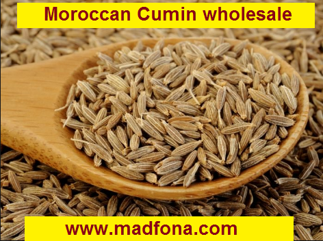 Moroccan Cumin wholesale