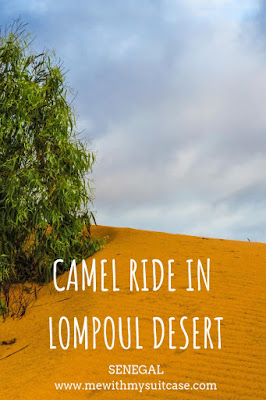 camel ride in lompoul desert