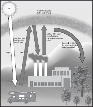 Carbon dioxide is one of the greenhouse gases in the atmosphere that traps heat close to the surface of the Earth.