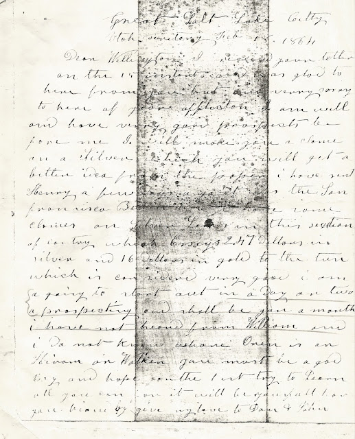 The Stephen Sherwood Letters : Wellington--Back to the Future