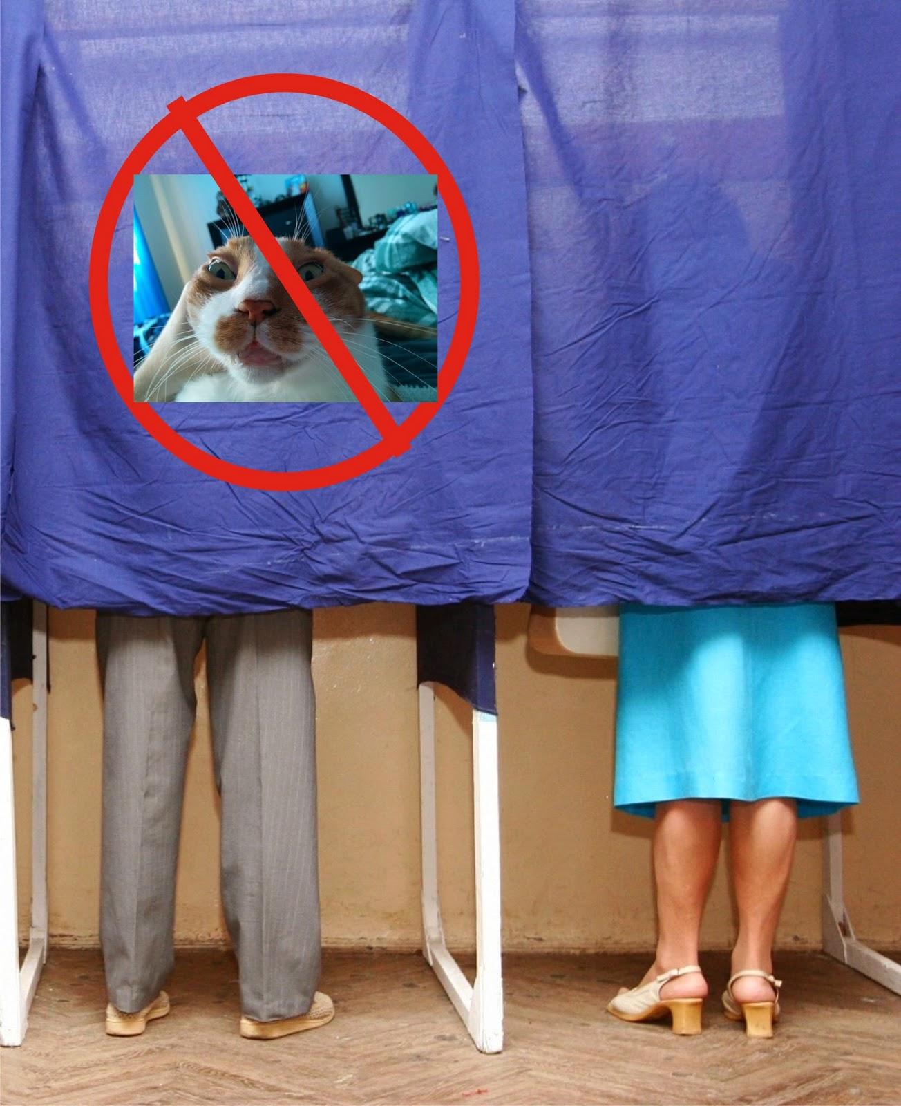 Totul Este Relativ: Nu Va Faceti Selfie In Cabina De Vot