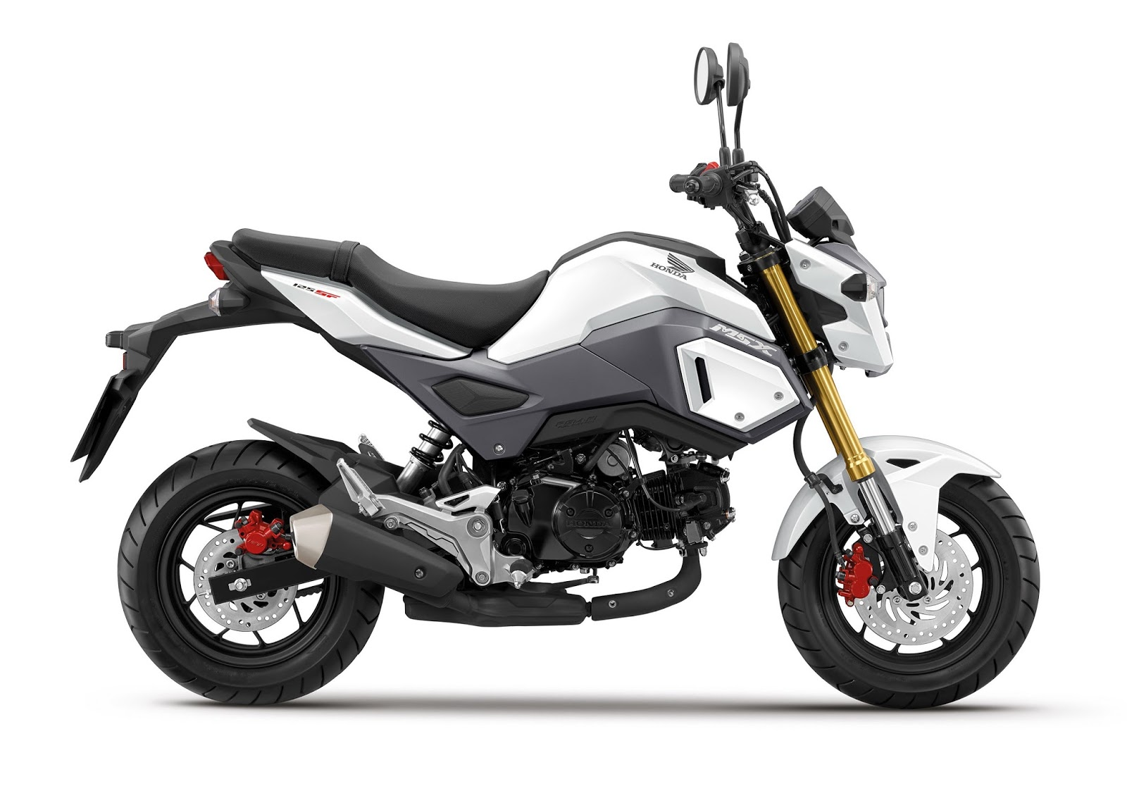Top 5 Overrated Motorcycles Revvin The 417 Motorcycle Spot Honda Grom Wiring Diagram Has Become Wildly Popular After Its Debut In 2014 It Is Becoming Second Bike Of Choice For All Those R6 Owners