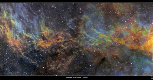 The central Cygnus as a cinemascope format image set
