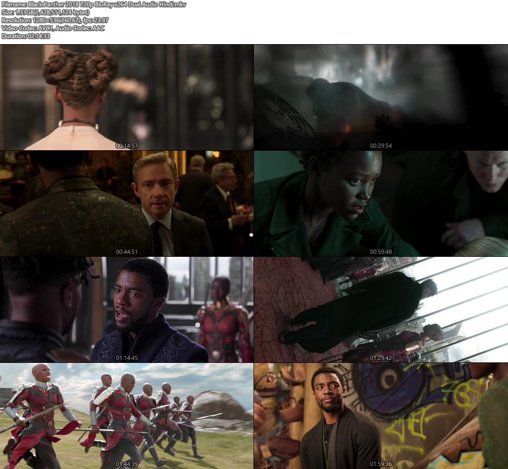 Black Panther 2018 Hindi 720p BluRay Dual Audio | 480p 300MB | 100MB HEVC Screenshot