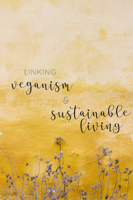 Let's talk about how I went from veganism to sustainable living, alongside sharing some thoughts around how you can live a more sustainable life too.