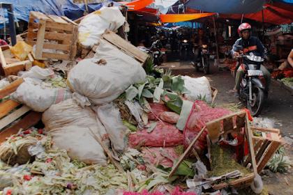 Modal Sampah Organik, Ini Panduan Mudah Budidaya Maggot Bagi Pemula