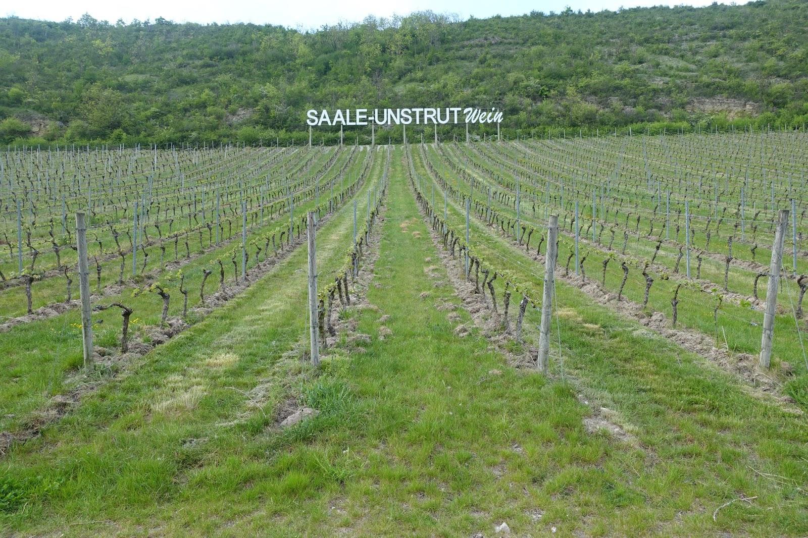 schiller-wine: June 2016