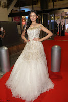 Rukshar Mir designer Anarkali Gown at 64th Jio Filmfare Awards South  2017 ~  Exclusive 083.JPG