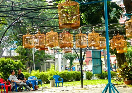Five things needed for newcomers to discover in HCMC