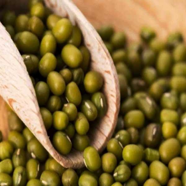 Kacang Hijau, Manfaat Kacang Hijau, Khasiat Kacang Hijau
