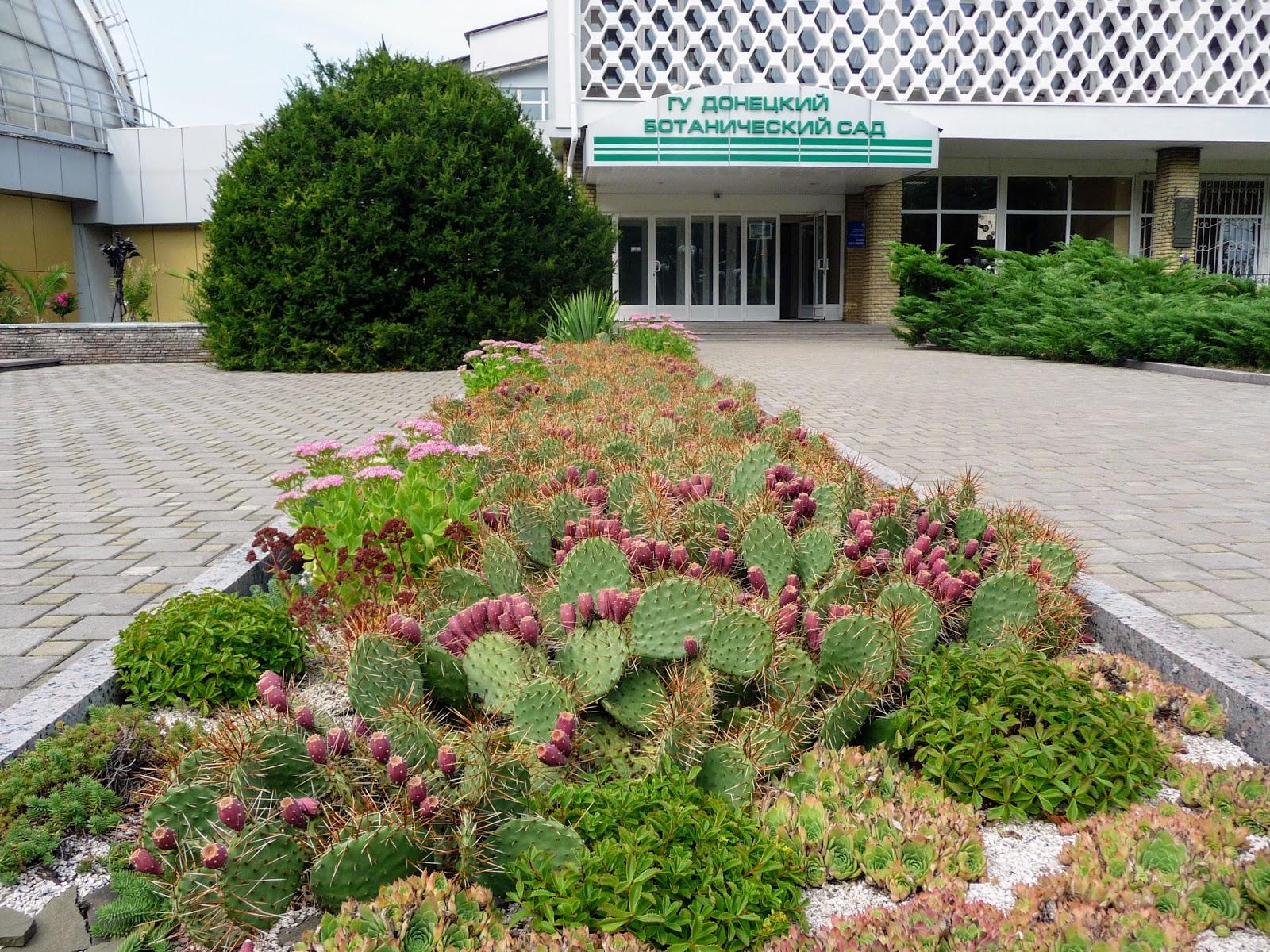ботанический сад донецк фото ждет второго