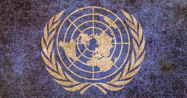 Organizacion Internacional y Tratado constitutivo