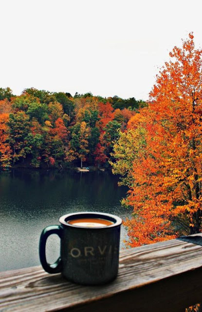 the best things about fall