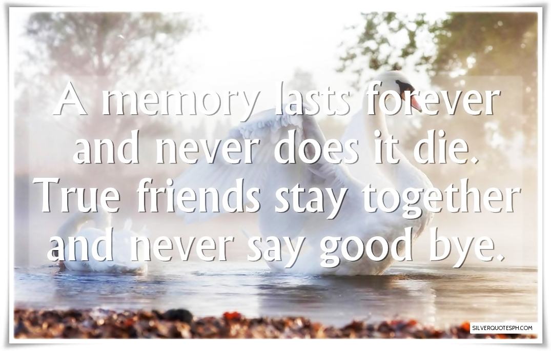 Staying Together Forever Quotes Friendship. QuotesGram