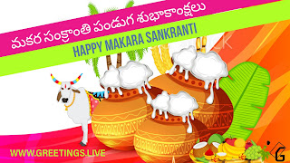 Sankranti Telugu Number one Flexi Image 2018