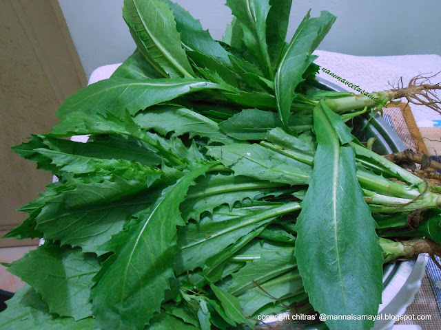 Kusum Green Leafy Vegetable