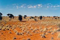 Aridez extrema (Kalahari)