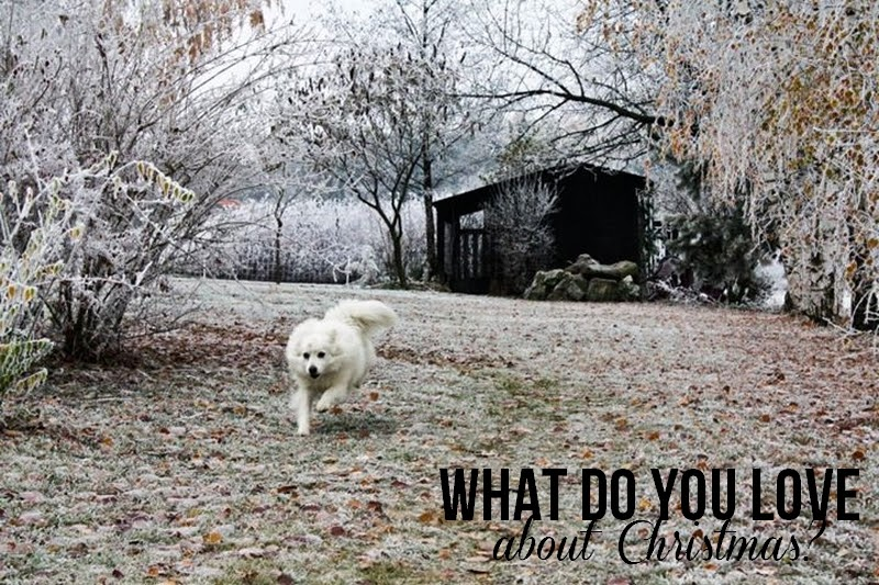 What do you love about Christmas?