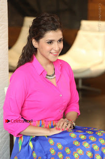 Actress Mannar Chopra in Pink Top and Blue Skirt at Rogue movie Interview  0174.JPG