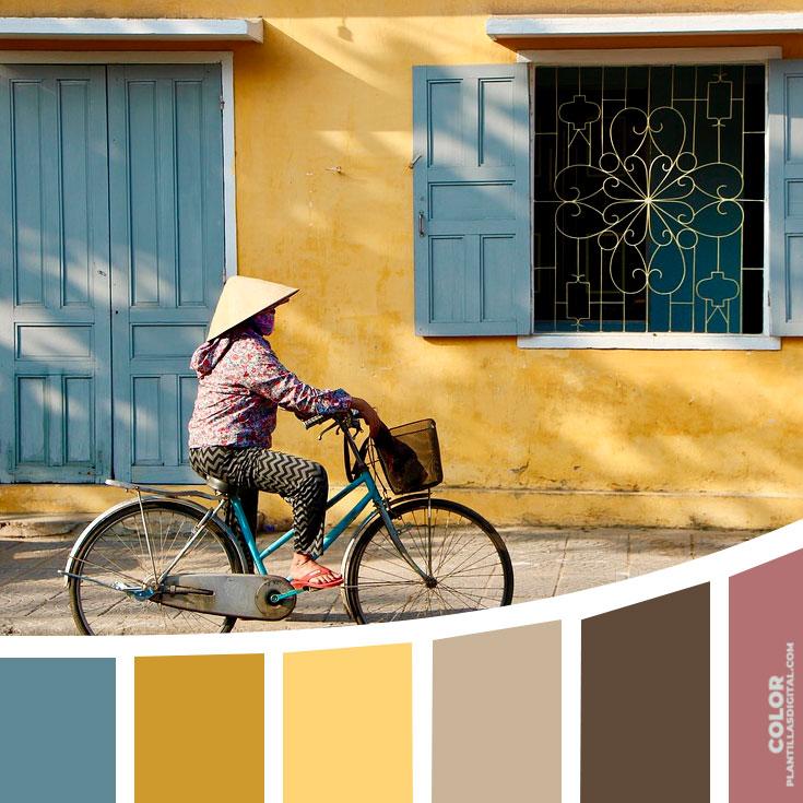 color_141