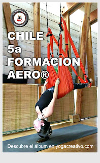 aerial yoga, aero yoga, air yoga, alliance, argentina, Brasil, chile, columpio, fitness, fly, flying, formacion, pilates, rafael martinez, santiago, teacher training, viña del mar. valparaiso, YOGA, yoga aereo