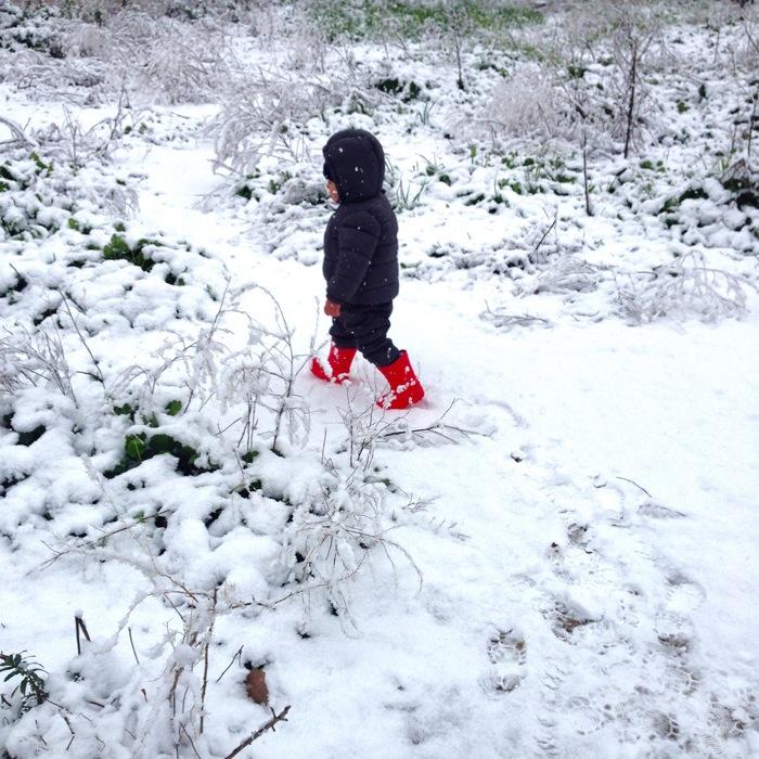 nieve-murcia-ciudad-enero-2017