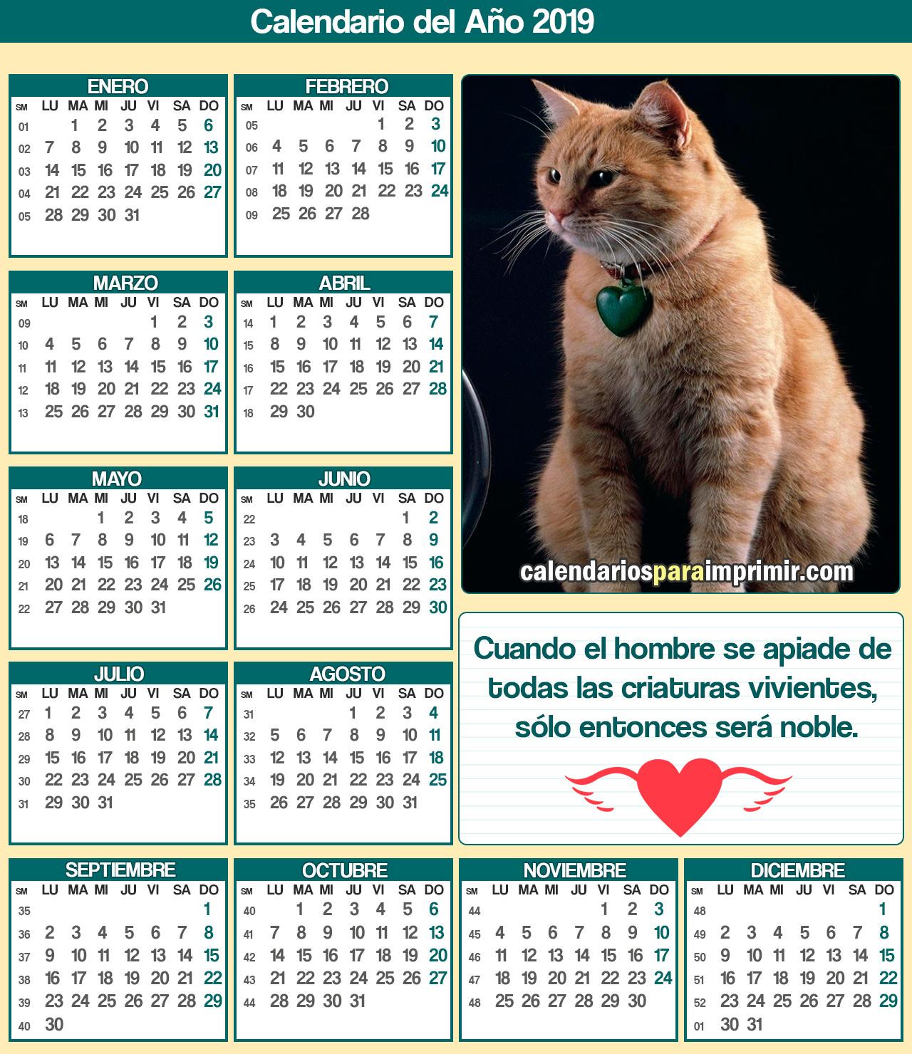 calendario 2019 para imprimir gatos