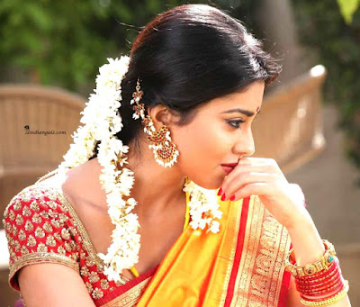 27 Beautiful Telugu Heroines Hot Photos in Saree