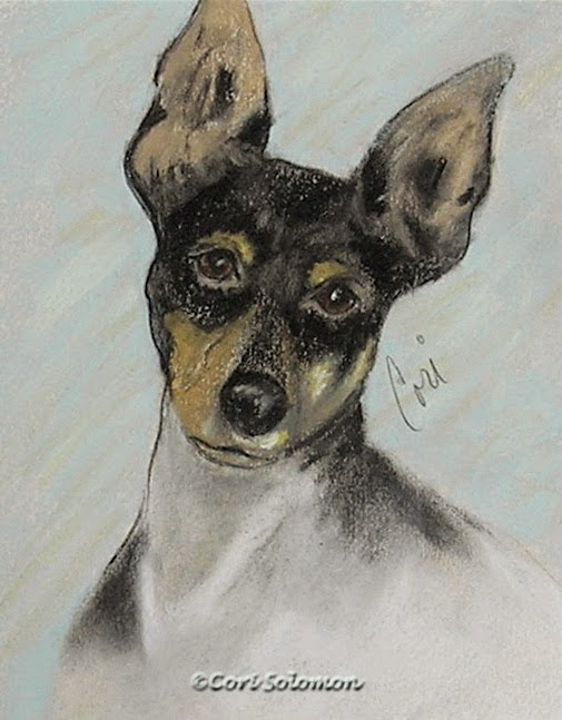 Toy Fox Terrier - My Oh My By Cori Solomon
