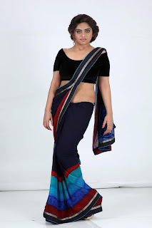 sheril virani in saree47