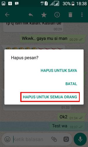 Cara Menghapus Pesan Terkirim di WhatsApp 02